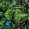 Washington Gardens, Palm Coast, Florida