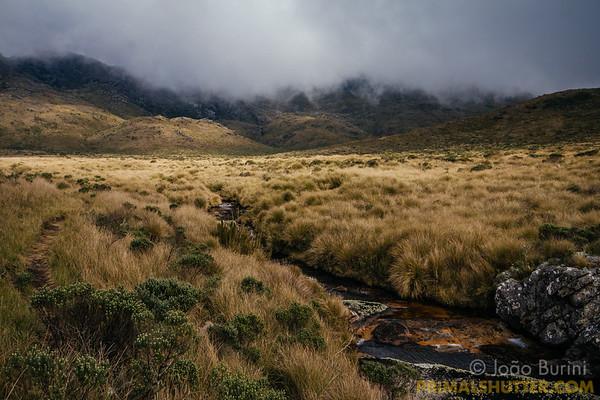 Plains in Itatiaia highlands