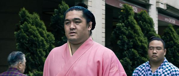 Two Rikishi I