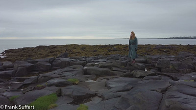 1706 Iceland Landvernd DJI Mavic 110