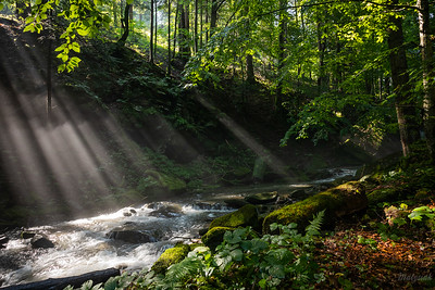 Potok oświecony