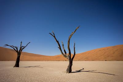 Dead Vlei in Sossusvlei, Nambia