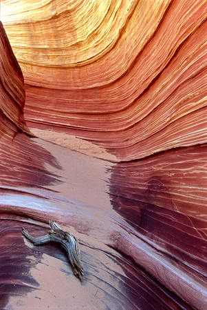 The Wave, Vermillion Cliffs National Monument, AZ