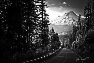 NF-48 / Mt. Hood, Oregon.