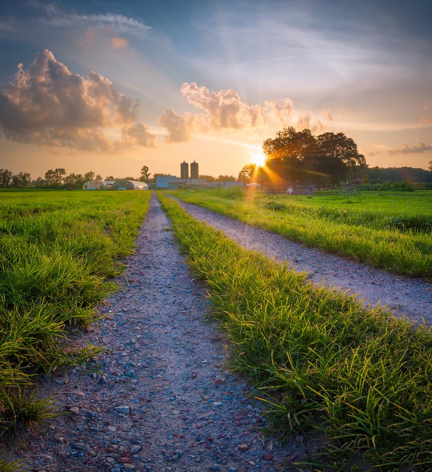 Last Sunset in Virginia
