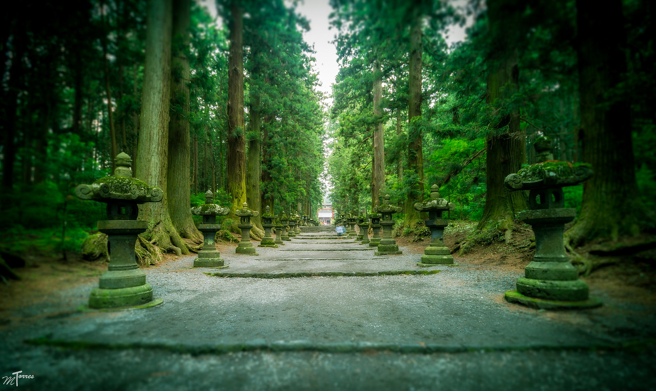 Pathway Up