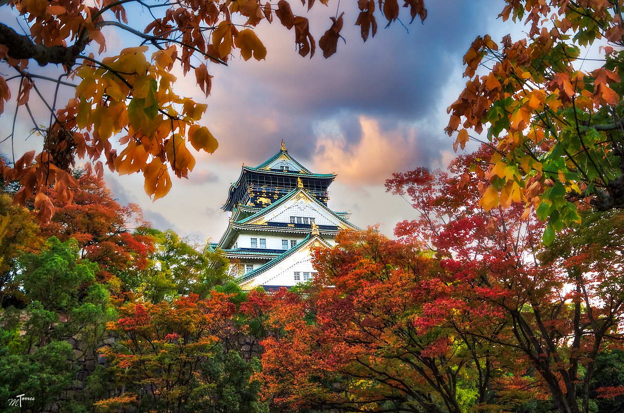Osaka Castle Framed in Colors