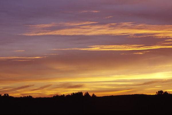 Backyard Sunsets