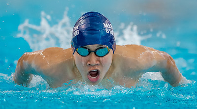Sample Swimming Images