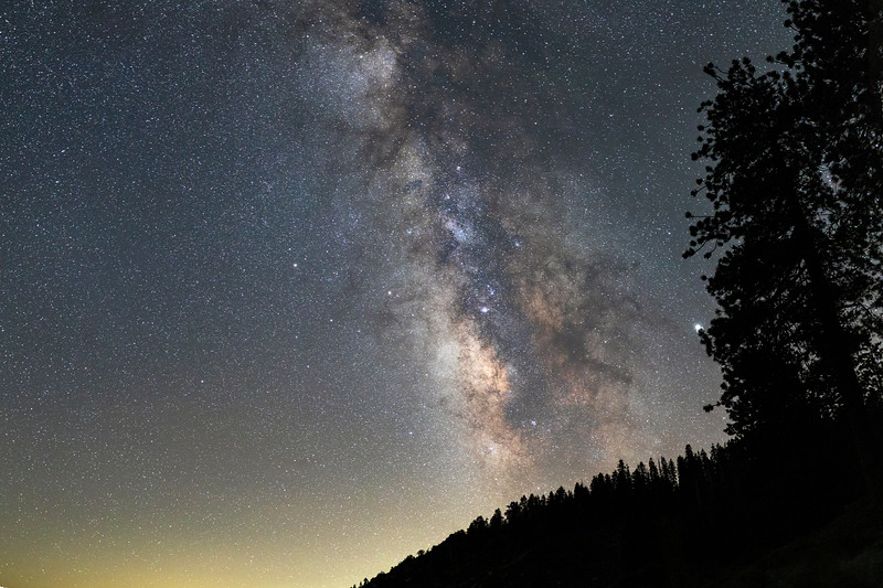 Milkyway Over Trees