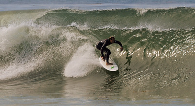 Surf and Horse (120)-3