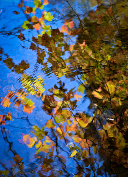 Fall reflections on the surface of the Norwalk River.