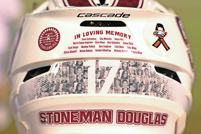 Remember the 17.  March 13, 2018, Marjory Stoneman Douglas High School, Parkland, FL