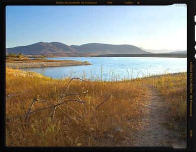 Sun Dried Spider Otay Lake