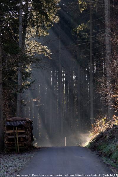 Licht auf dem Weg