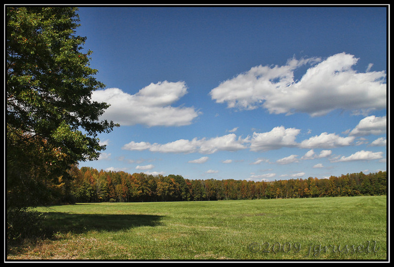 Meadow, Plainsboro Preserve