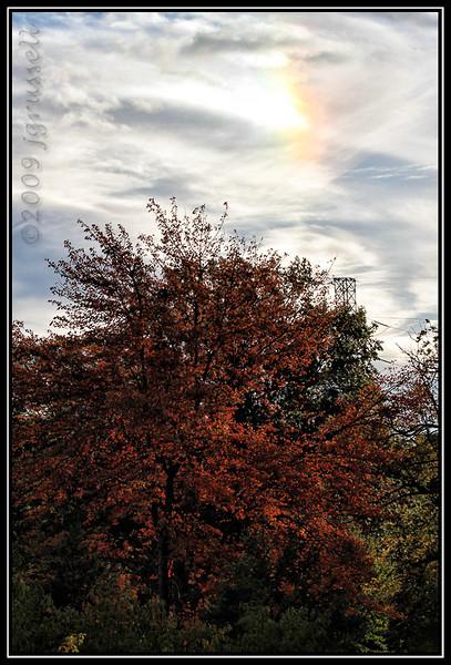 Sun dog<br /> Roosevelt Park