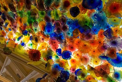 Bellagio Glass Flowers Las Vegas, NV - January 2009