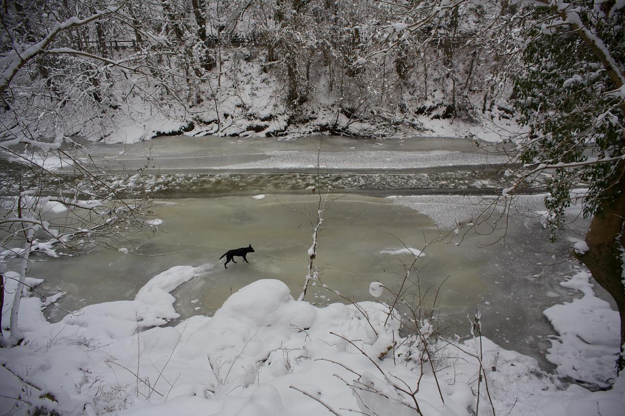 Week 52 - Walking on thin Ice