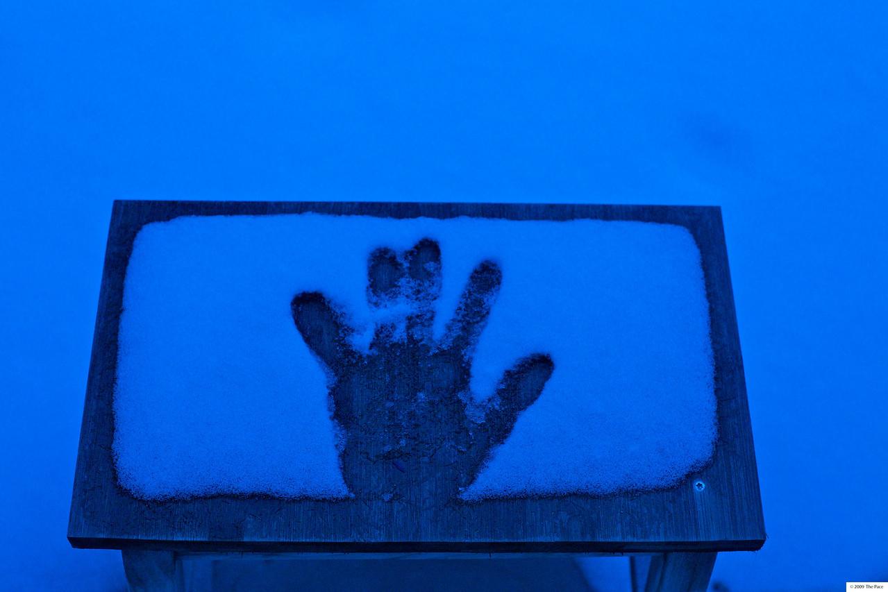 Week 2 - 2010 - Should have worn gloves - 5D OM mount sigma 28/1.8 aspherical