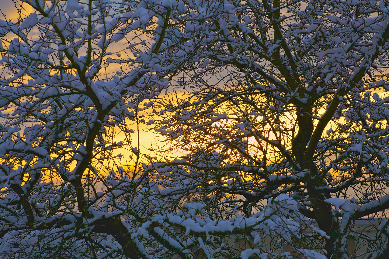 Week 47 - snow sunset!