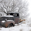 Found this old truck at abandoned farmstead.