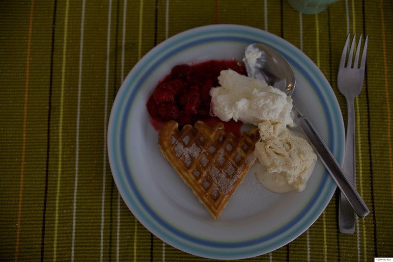 Week 5 2010 - waffles yum! - 5D2 35-80/2.8