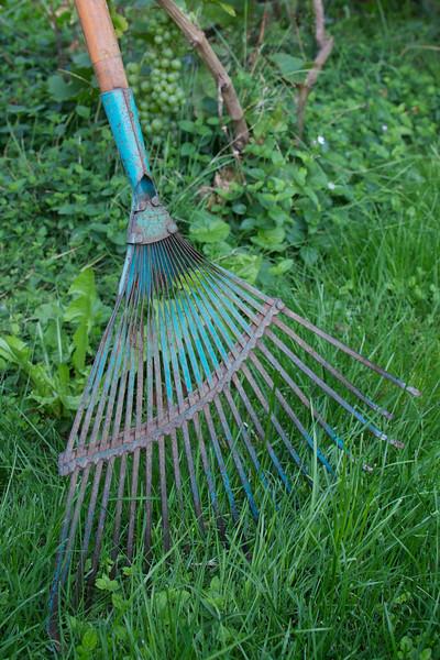 Week 33 - Garden Rake!