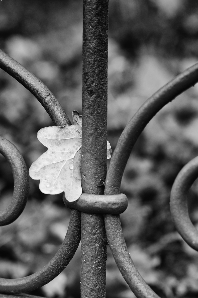 Wrought with leaf