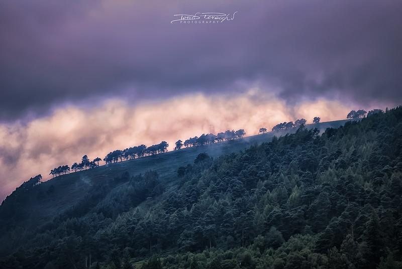 La Nebbia Si Colora