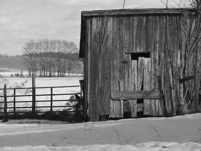 12-15-13: Abandoned shed, Narrowback Road
