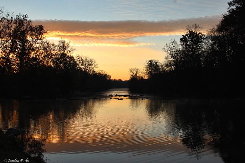 11-3-14: Morning, at Wildwood.