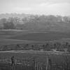12-9-14: Haystacks, Limestone Lane