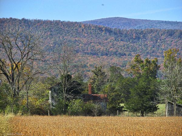 10-25-14: abandoned homestead, Timber Ridge