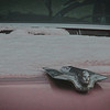 11-28-14: on the hood of a pink Cadillac