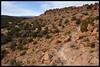 Estante Rim Trail