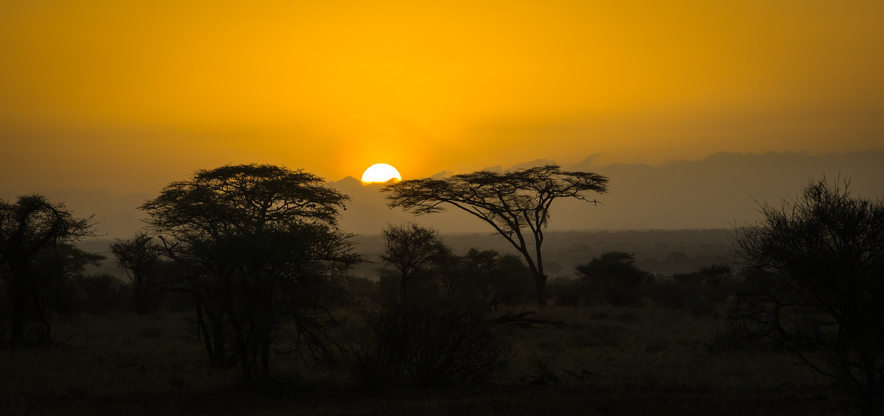 Soft African Sunrise