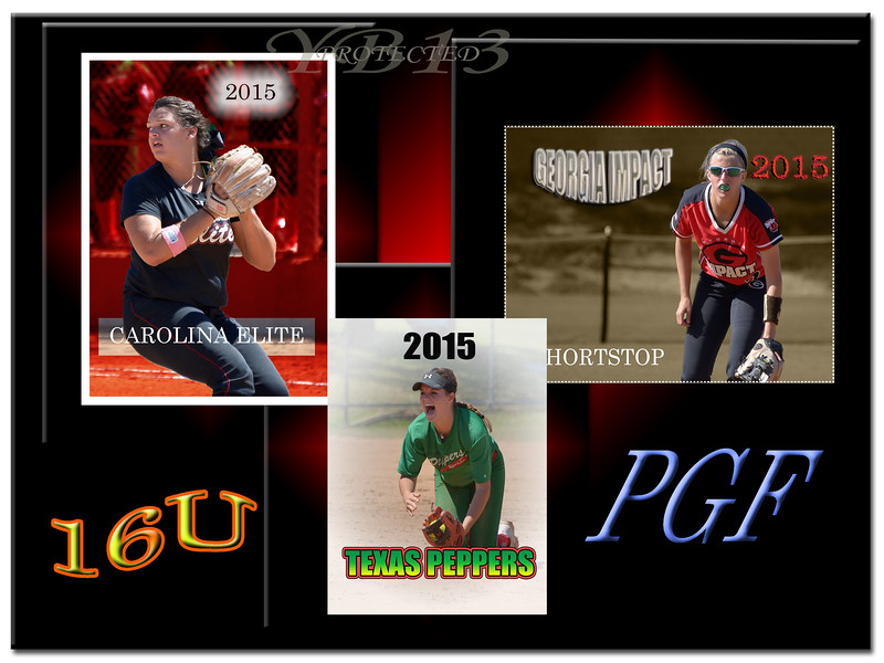 PGF 2015 3FOR