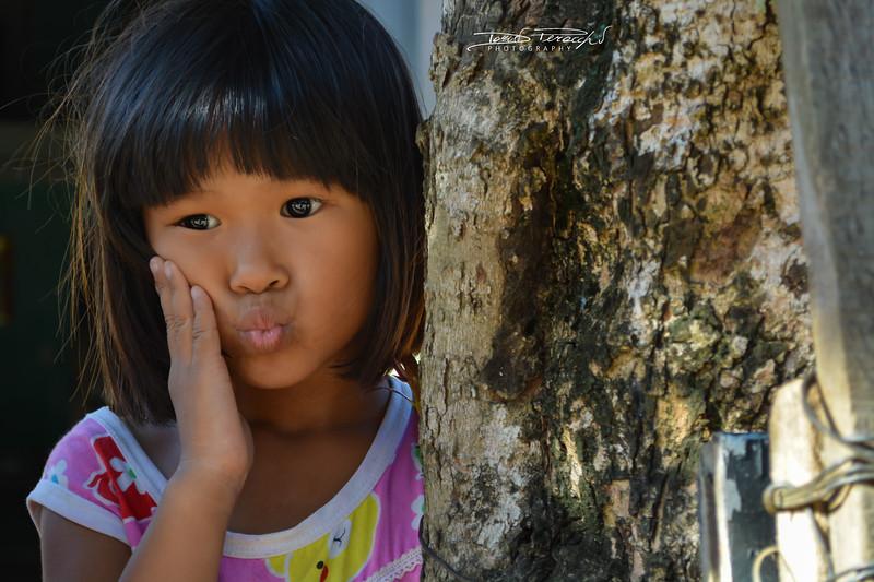 Ritratto Del Vietnam