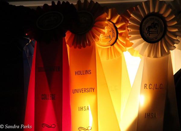 8-31-15: Sunlight on Cecelia's ribbons