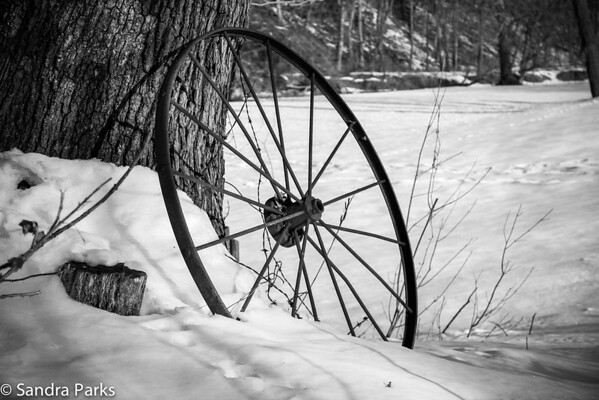 2-28-15- Wheel by the river