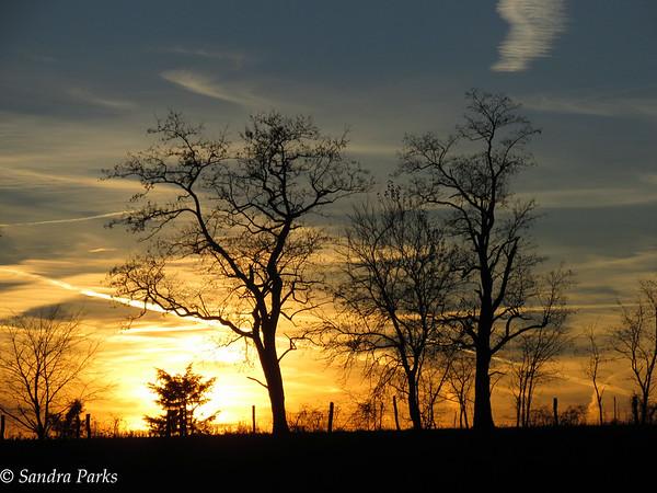 11-24-15: sunset on Centerville