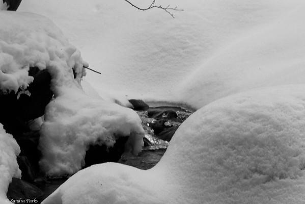 3-01-15: Wolf Ridge