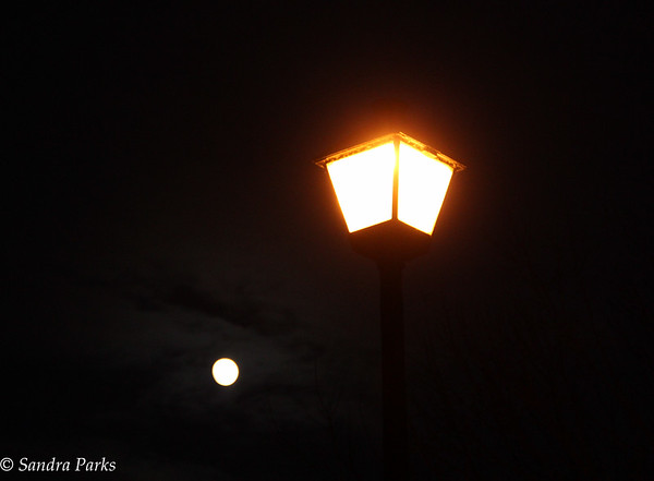 11-23-15: Full moon under a streetlight