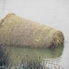 10-4--15:  Sunken hay bale