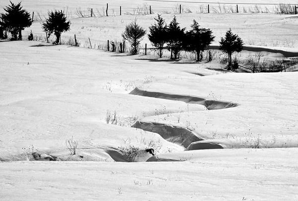 2-22-15: Snowy fields, Kiser Road
