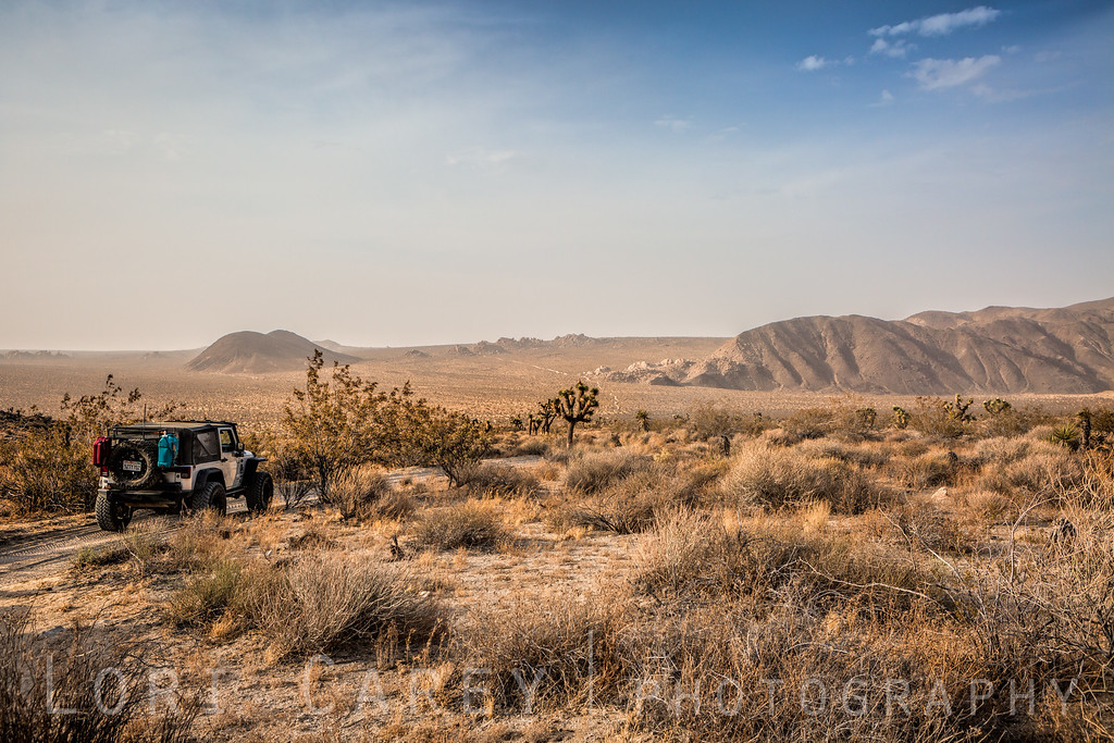 Jeep Wrangler on Geology Tour Road in Joshua Tree National Park