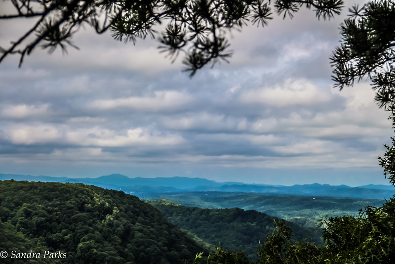 Mann's Creek Gorge Overlook