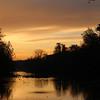 10-30-16: a Wildwood morning