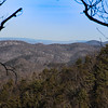 12-31-16:  On Shenandoah Mountain.